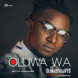 @oluwashinavyb