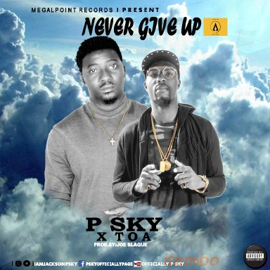 P Sky   Never Give Up (Life Experience) Ft T.O.A