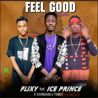 flixy feat x'xarmani and tinny feel good cover