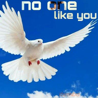 No like you