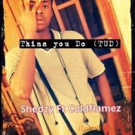 Thins you do (TUD)