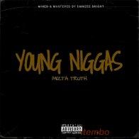 Mizta_Truth_-_Young_Niggas
