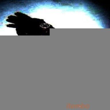 Halle Berry (Black Berry)